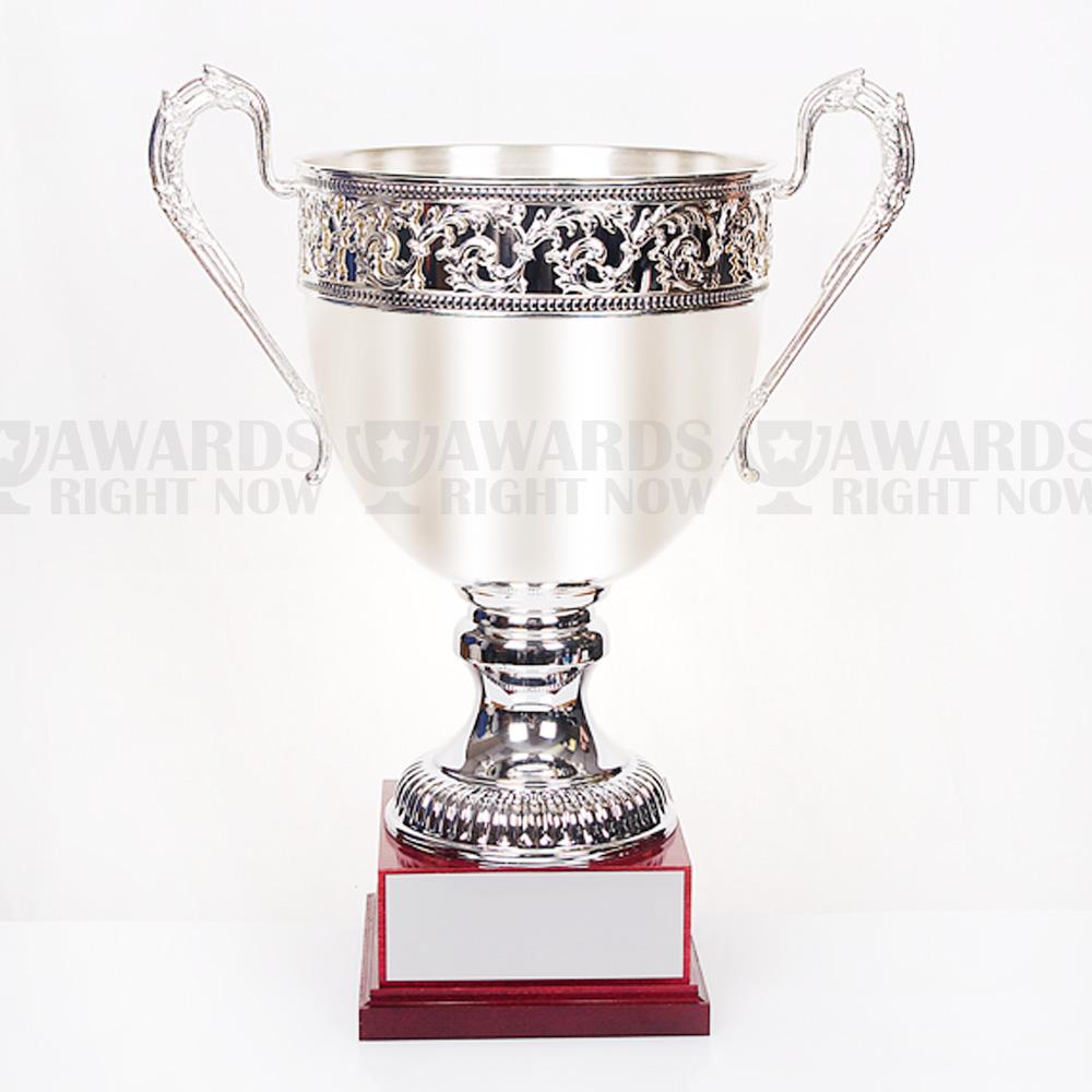 Renaissance Cup